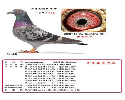 八关鑫鼎铁血32