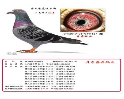 八关鑫鼎铁血31