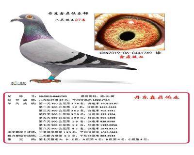 八关鑫鼎铁血27