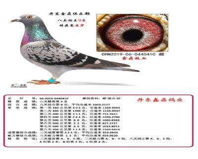 八关鑫鼎铁血9