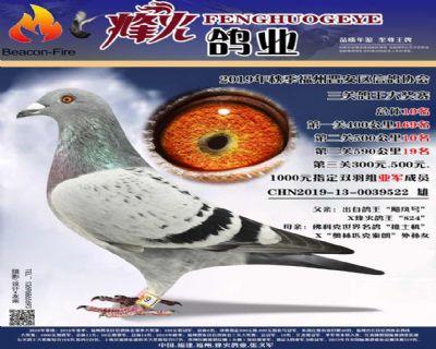 19福州晋安信鸽协会三关10名