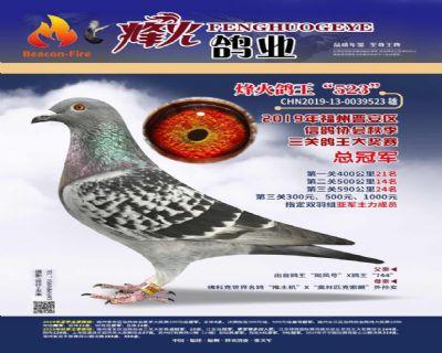 19秋季福州晋安信鸽协会三关冠军