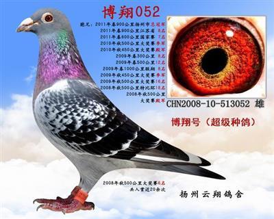 博翔052