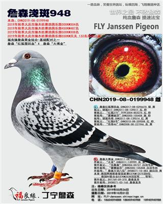 詹森�\斑948