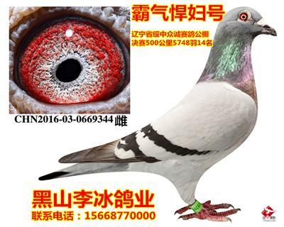 2012321094510副本_副本