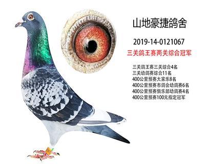 三�P��王��申P�C合冠�、三�P�C合第4名