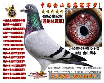 上海�矣�寄养棚450冠军,指定通炮冠军!