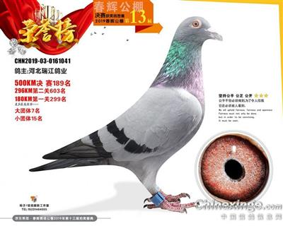 19年北京春辉公棚189名