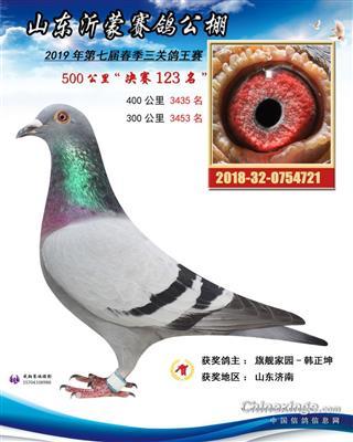 2018年成绩鸽
