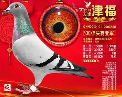 2019年天津津福530公里决赛亚军