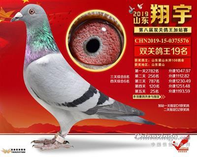 2019年山东翔宇决赛25名