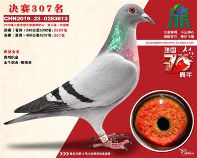云南大理九鼎决赛307名