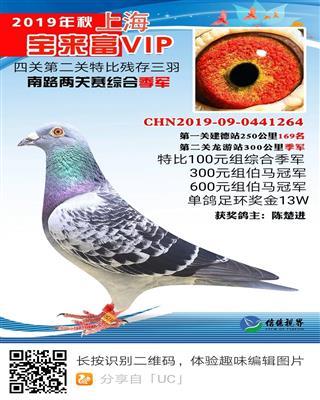 上海宝来富VIP俱乐部秋季综合季军