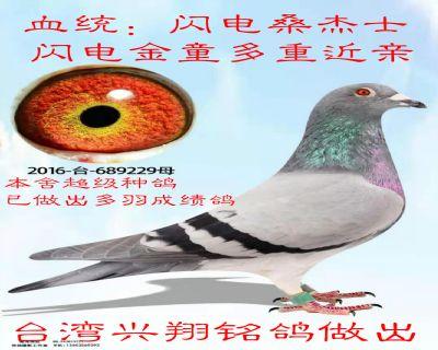 微信�D片_20191106181048_meitu_1