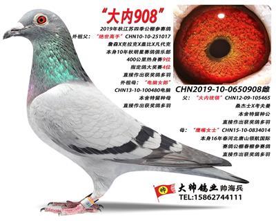 """""""大内908"""""""