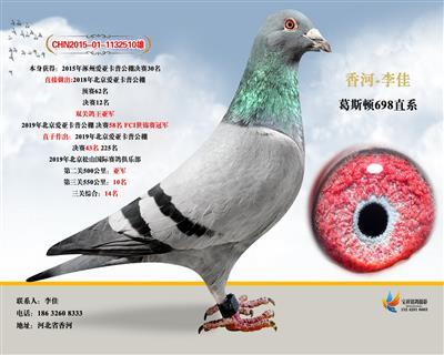 2015年涿州爱亚卡普决赛30名