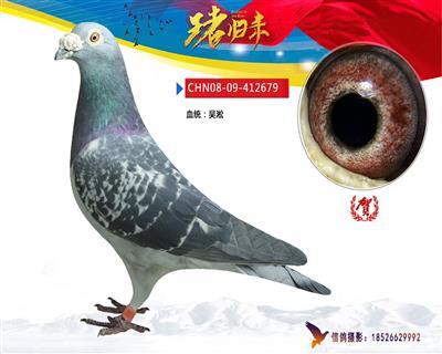 吴淞679