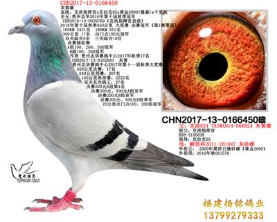 CHN2017-13-0166450