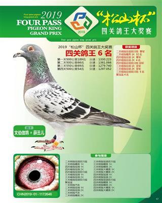 2019年北京松山国际四关鸽王六名