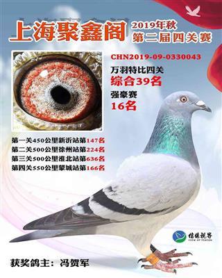 2019年上海聚鑫阁4关综合39名