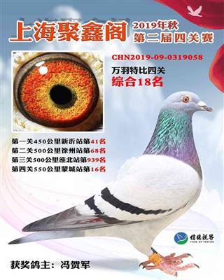 2019年上海聚鑫阁4关综合18名