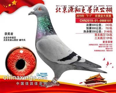 2019年北京克劳沃243名