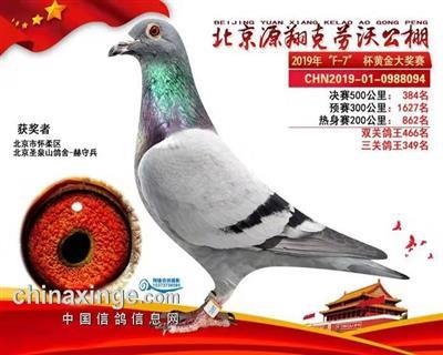 2019年北京克劳沃384名