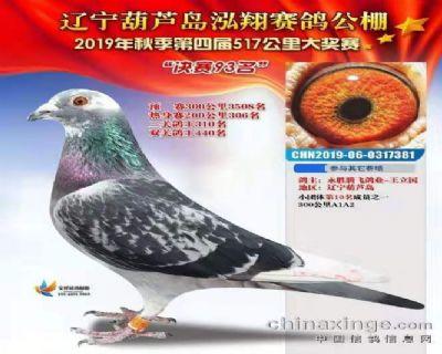 2109年辽宁泓翔公棚决赛93名