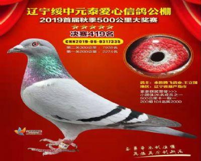 2019年辽宁元泰公棚决赛419名