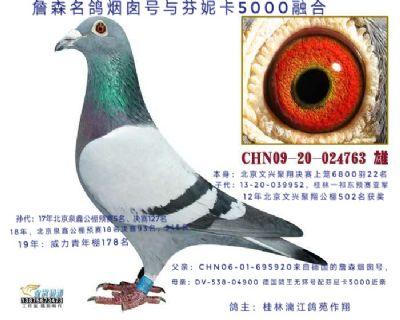 芬妮卡五千北京文星聚祥22名(万羽公棚)