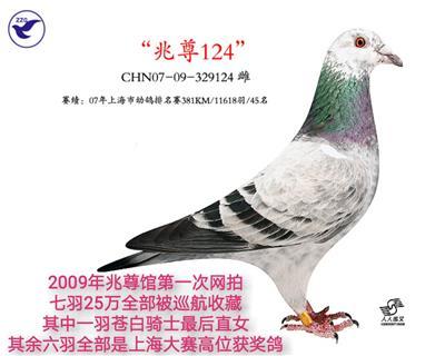 兆尊苍白124