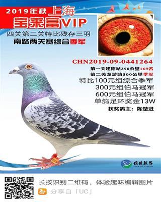 上海VIP俱�凡�申P�C合季�
