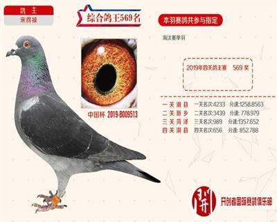 开创 中国杯9513
