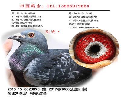 吴淞893
