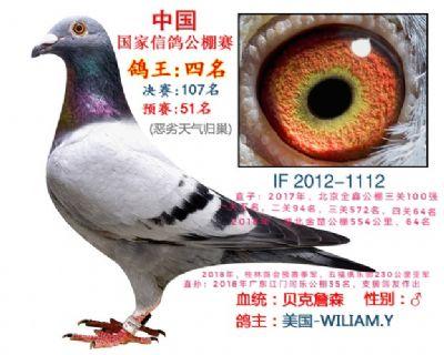 贝克詹森,中国国家公棚鸽王殿军