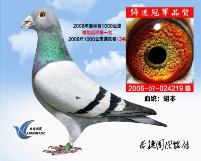 2008年吉林省千公里品�u雄���M冠�