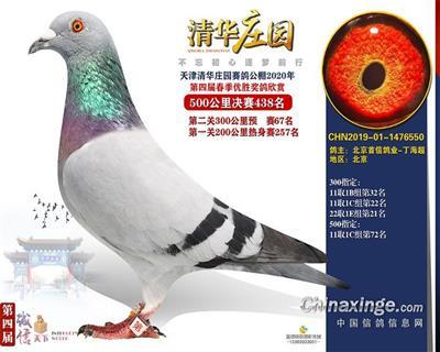 清华庄园438