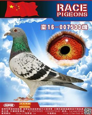 清棚慕利�Tx修斯肯533
