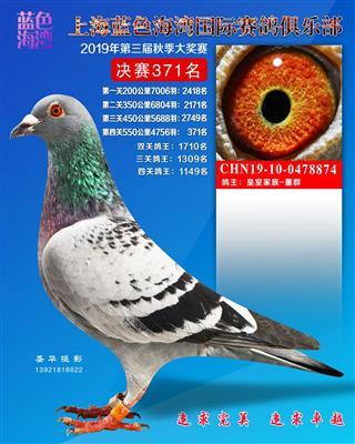 上海蓝色海湾公棚决赛371名