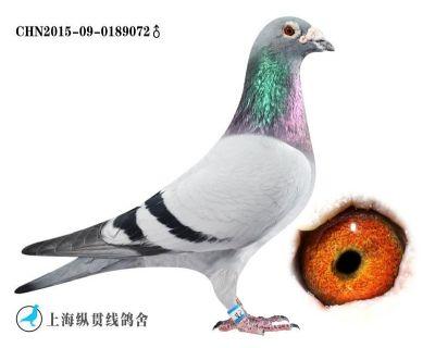 飞宏139名072