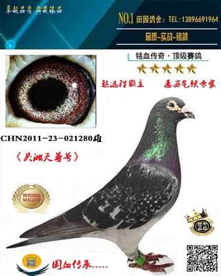 吴淞280