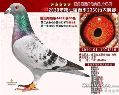 唐山大春潮决赛30名(已售)