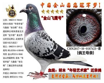"""胡本""""年轻艺术家""""多重近亲鸽!"""