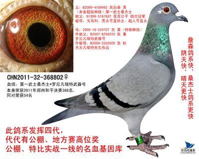2011-32-368802
