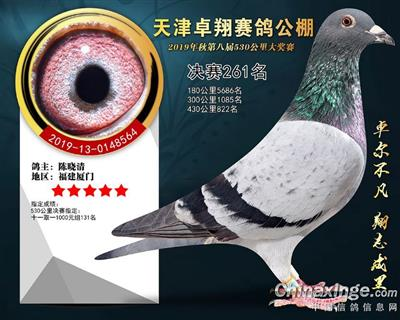 2019年天津卓翔公棚决赛261名