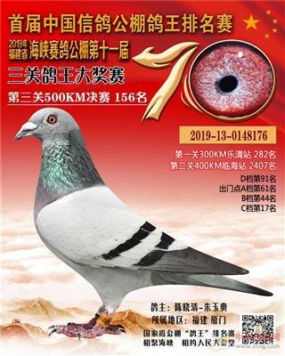 2019年福建海峡公棚决赛156名