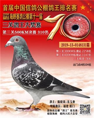 2019年福建海峡公棚决赛310名