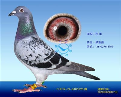 中港凡���N��-098