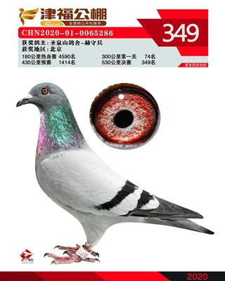 2020年津福349名