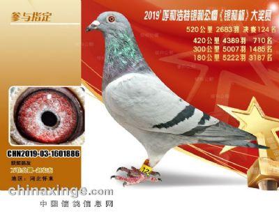 微信图片_20201101161440